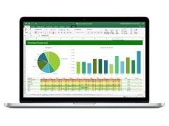 Learning Basic Accounting Principles