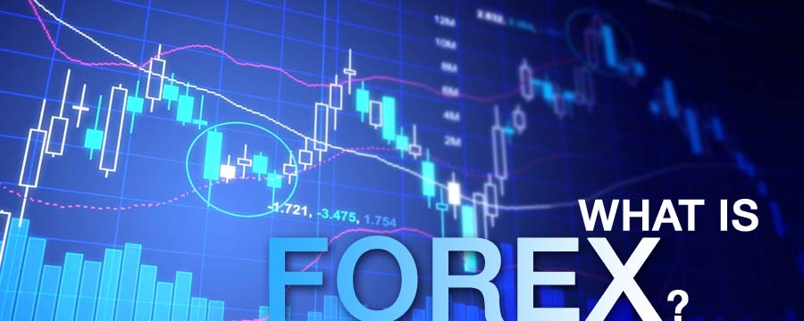 Trading The Forex Market Online Finance Courses
